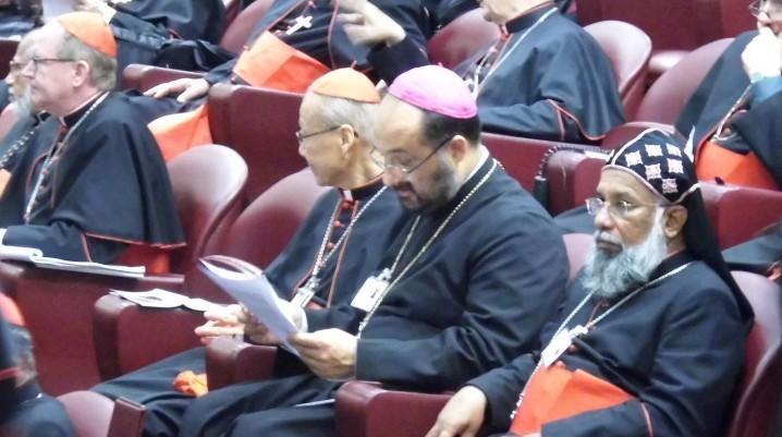 Ecouri de la sinodul dedicat familiei creştine – Roma, octombrie 2014