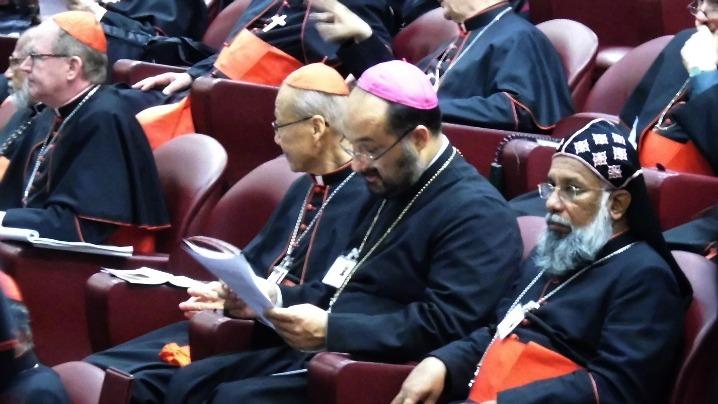 «Sinodul nu este un parlament, nu s-a căutat popularitatea»